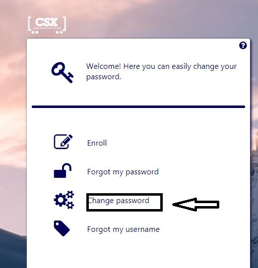 csx change password